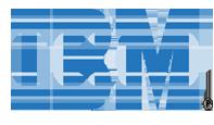 IBM. Cliente formación Marina Estacio